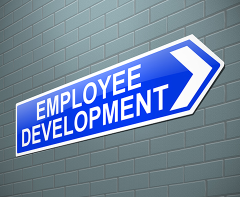 Investing In Employee Training